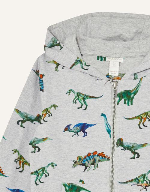 Dinosaur Print Hoody, Grey (GREY), large