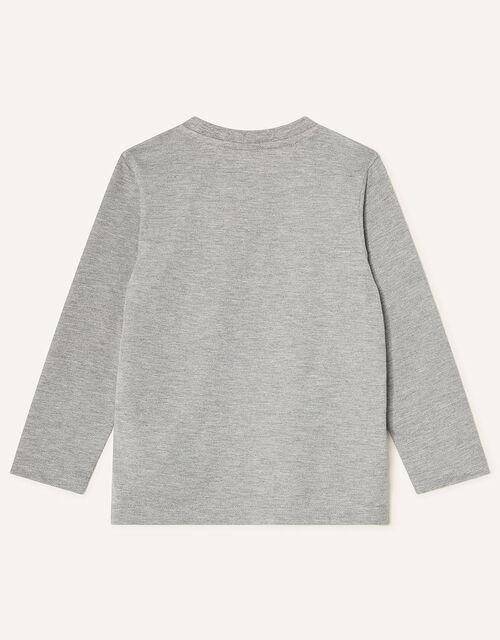 Dinosaur Long Sleeve T-Shirt, Grey (GREY), large