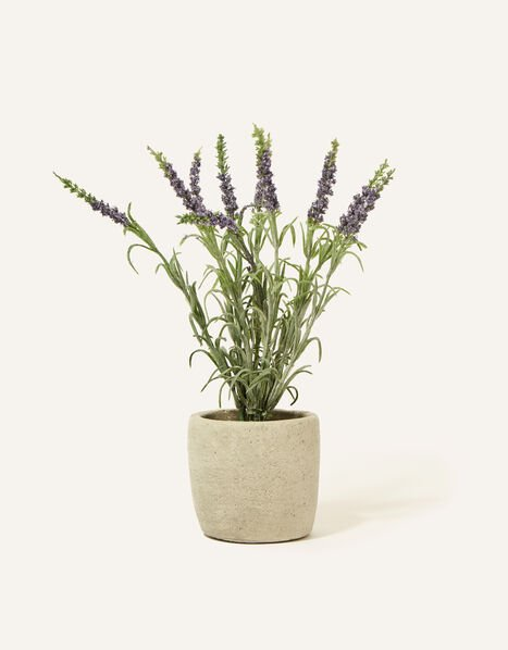 Faux Lavender Plant Pot, , large