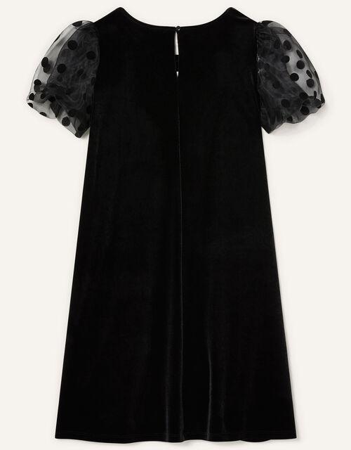 Organza Sleeve Velvet Dress, Black (BLACK), large