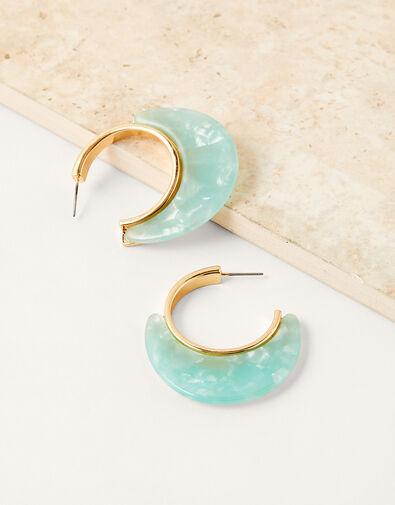 Resin Hoop Earrings, , large