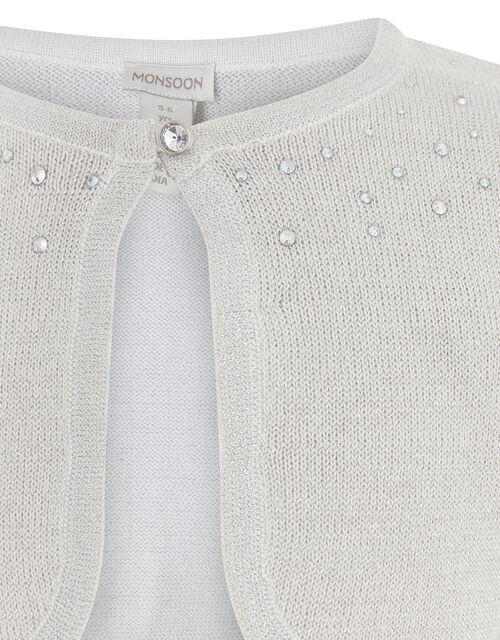 Niamh Crystal Knitted Cardigan, Silver (SILVER), large